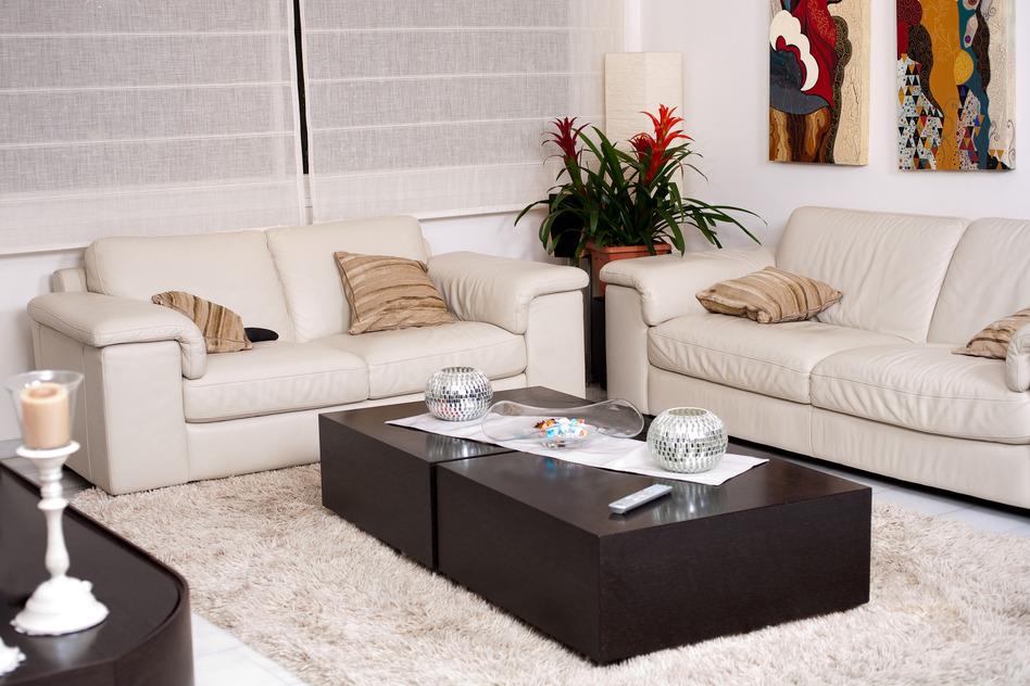 photodune-486292-living-room-s_1