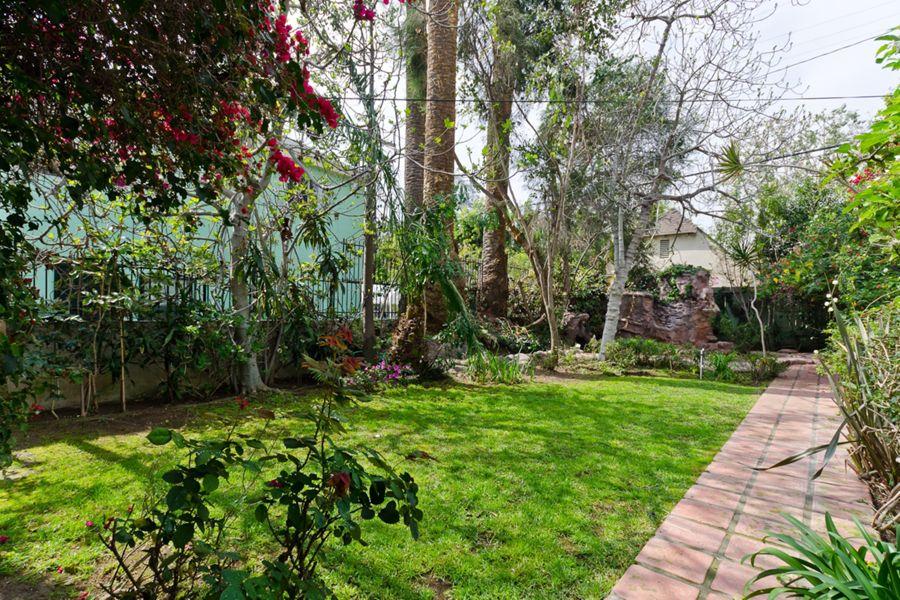 LA_-_backyard_2