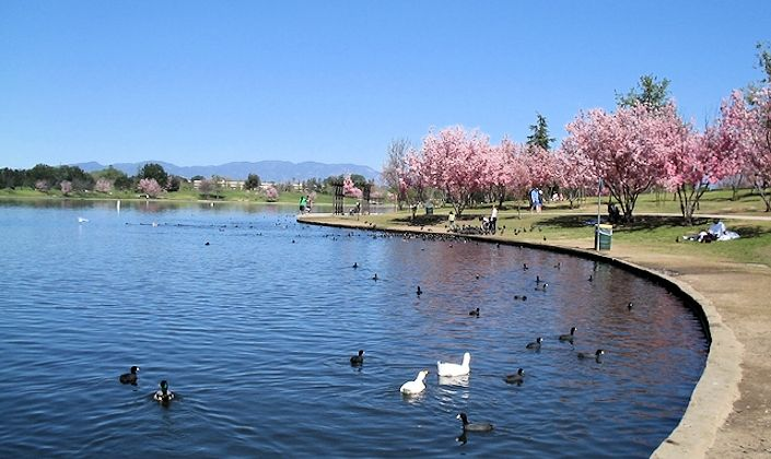 LakeBalboa_park