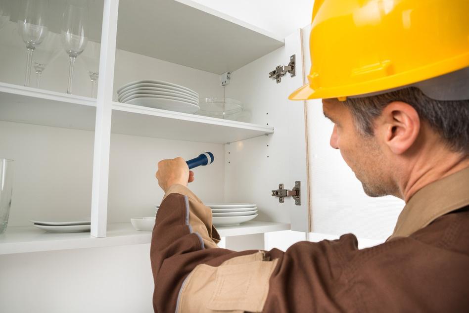 photodune-10291796-pest-control-worker-checking-shelf-s