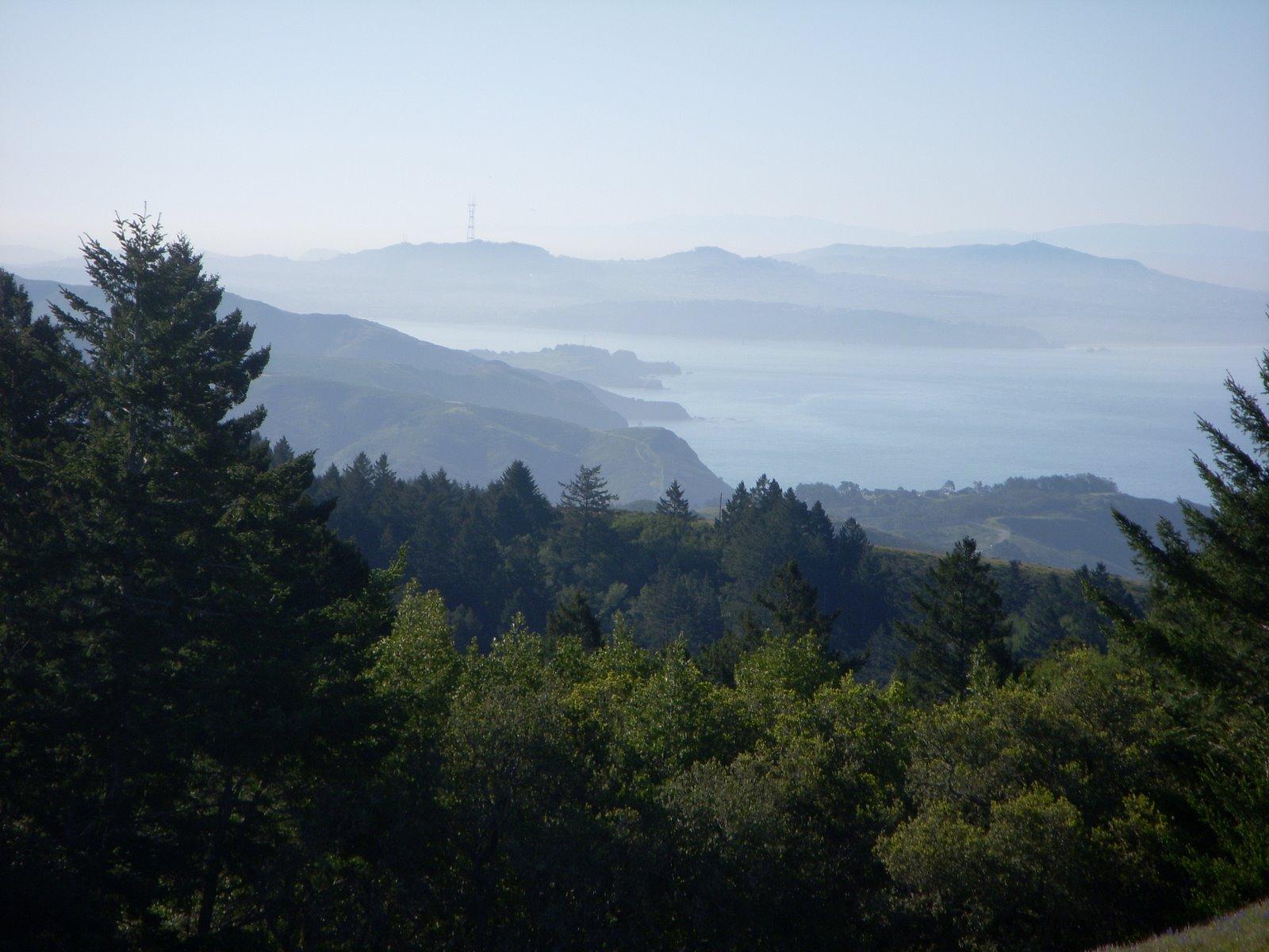 pan view