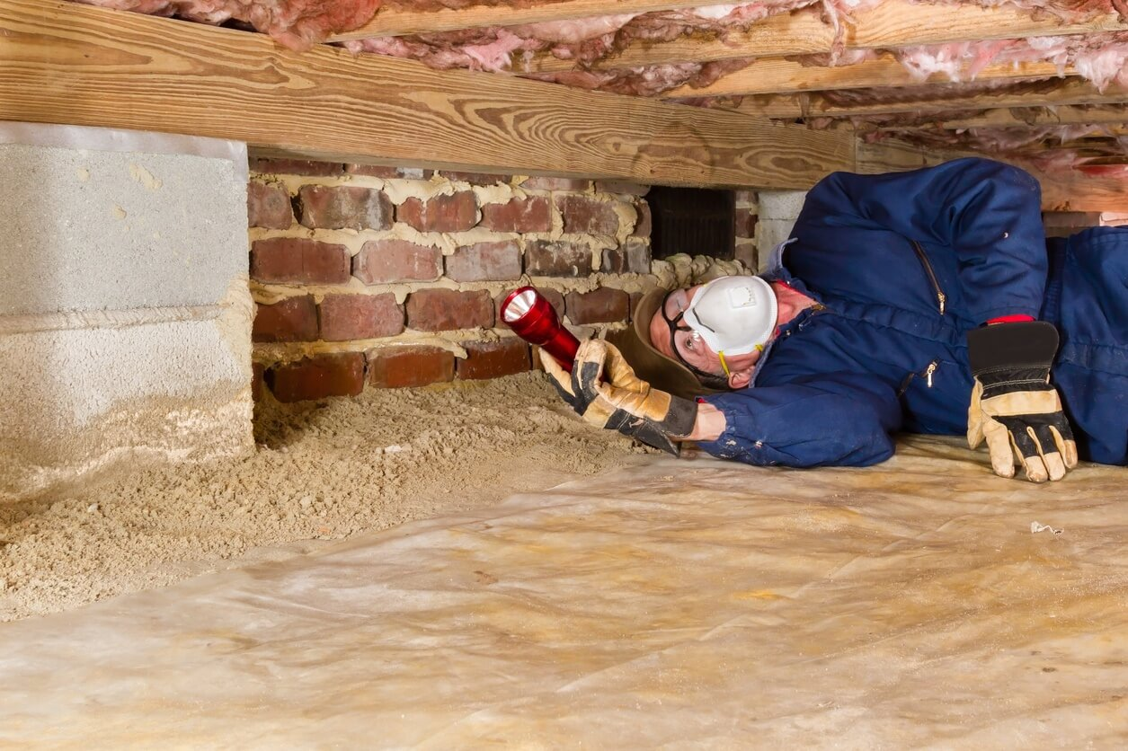 Who Pays For Termite Inspections What Treatment Costs